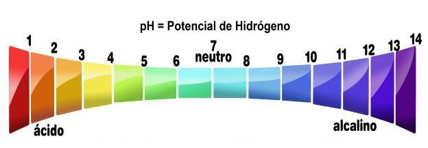 La escala marca los distintos grados en que se divide la medición del pH. Siendo 1 el más ácido y 14 el más alcalino.