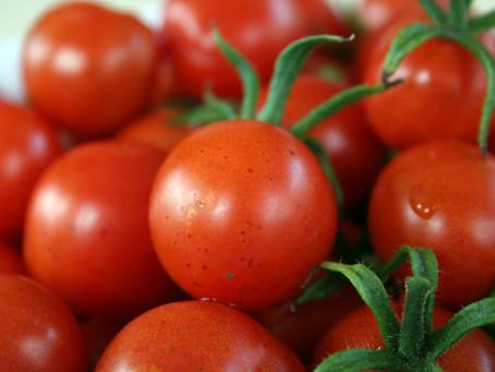 B.R.A.T. Tomatoes