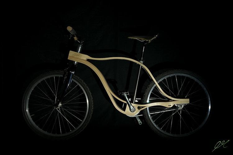 bike2_opt.jpg