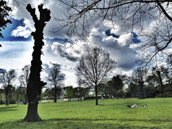 Hyde Park Photo by Duilio Marconi ©