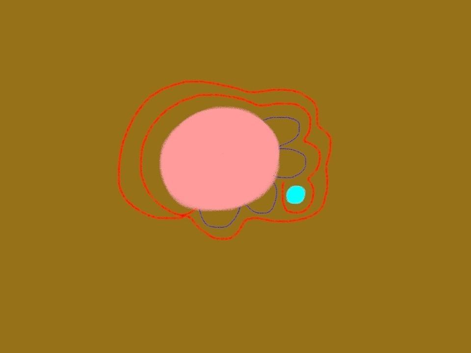 9c6a30a5094b4ab42c55beb291e4ac57.jpg