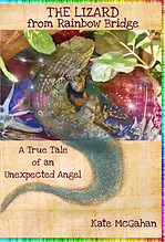 5 Star Highest Rating book on Signs from the Afterlife and Pet Loss Grief