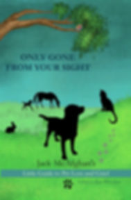 Front Cover of Jack McAfghan's Only Gone From Your Sight