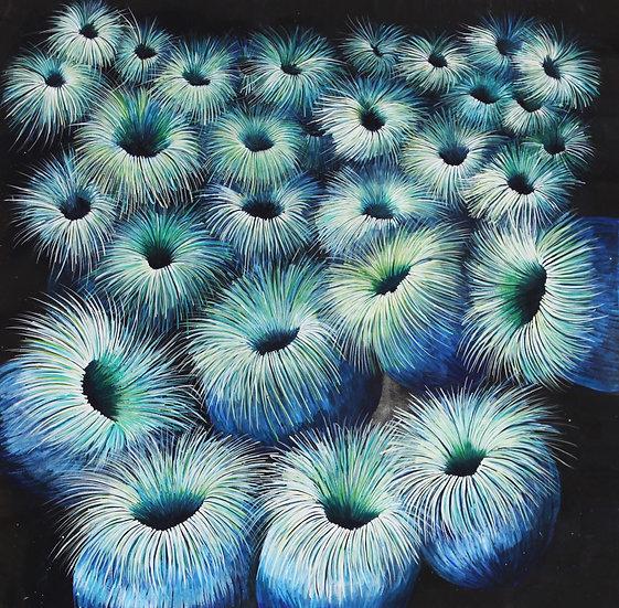 Salt Water Sea Urchin Dreaming