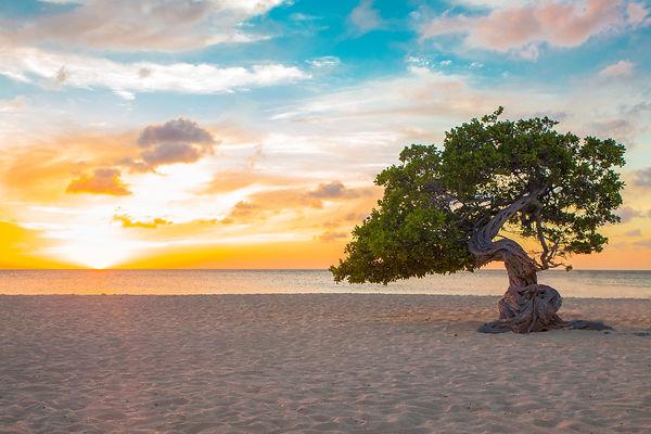 Aruba.jpeg