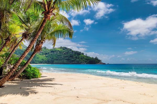 Jamaica.jpeg