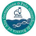polo_logo.jpg