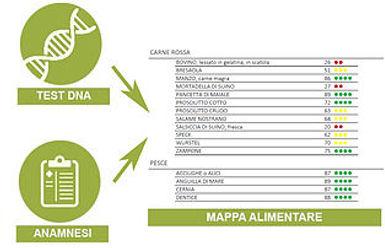 mappa copy.jpg