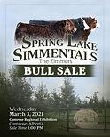 SpringLakeSimmentals BullSale 2021 cover