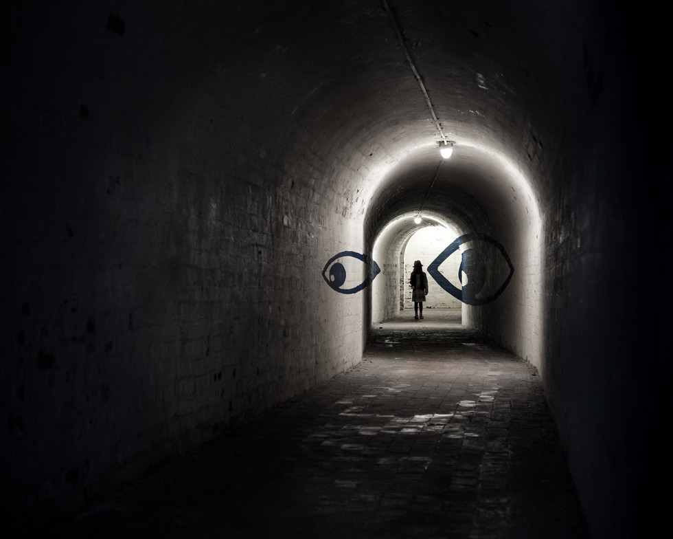 a-tunnel-between-the-eyes_42618135432_o.