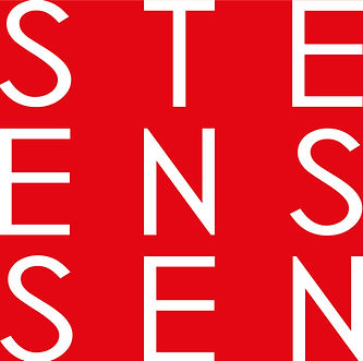 Steenssen Logo