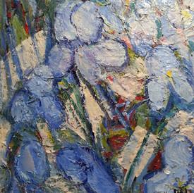 Blue Iris. 16x20