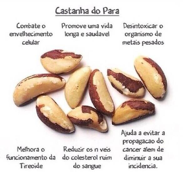 Benefícios da castanha do Pará.