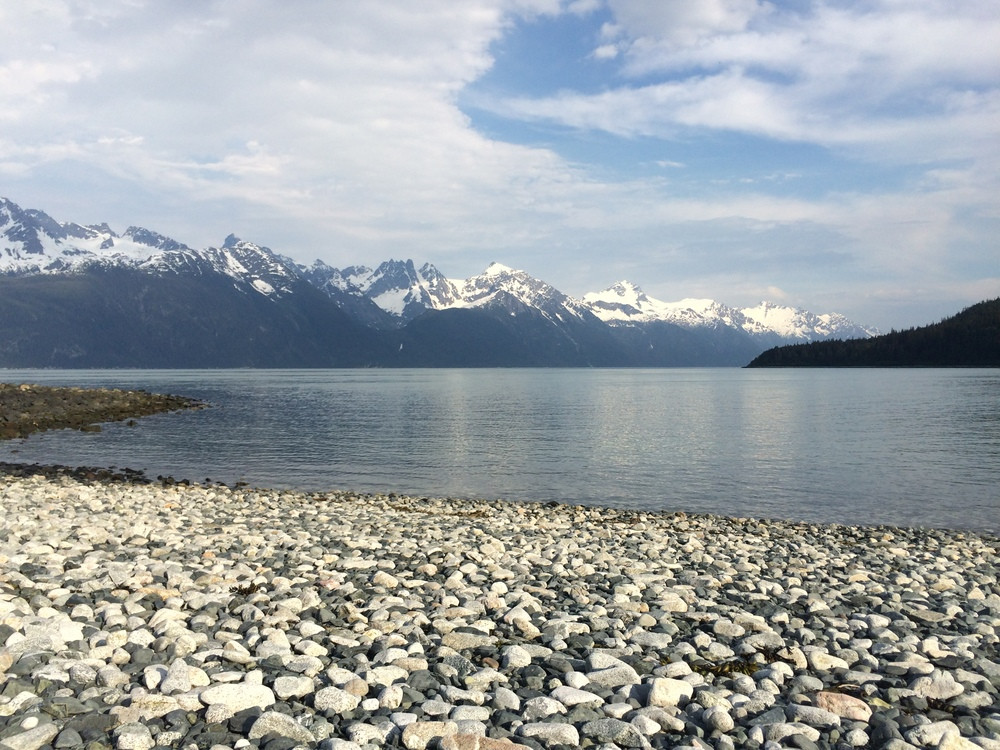 Viking Cove Water & Mountains - Haines A