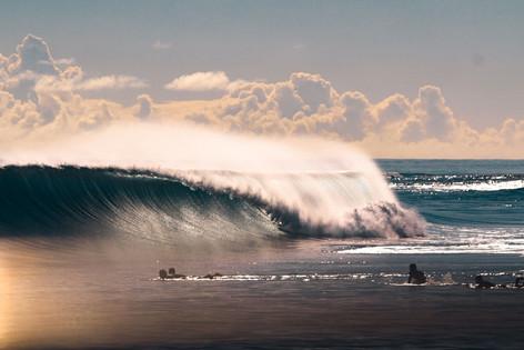 Surf's Up Bali