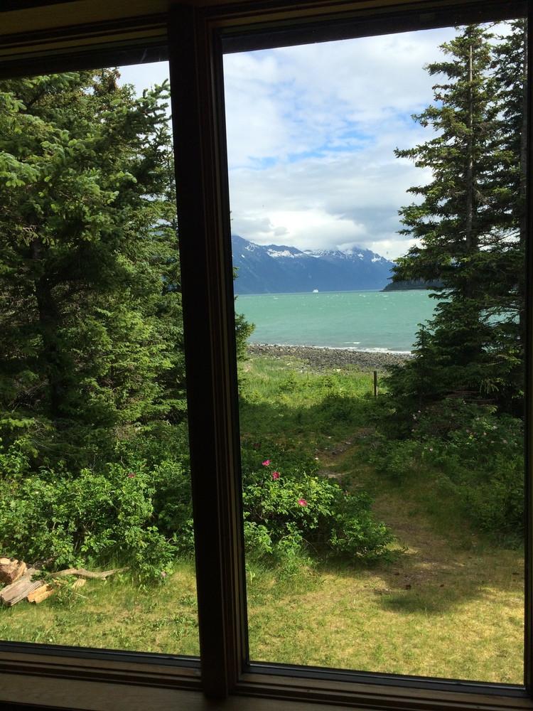 Window View of Viking Cove.jpeg