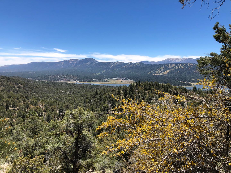Big Bear Mountain Hiking