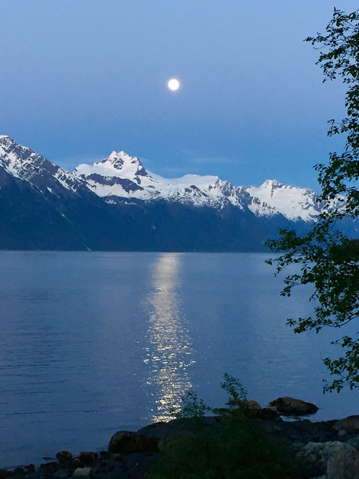 Moonlight On the Fjord at Viking Cove -