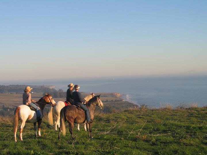 Horseback riding with ocean views
