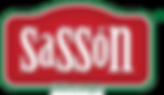 Sassón_Verctor-02.png