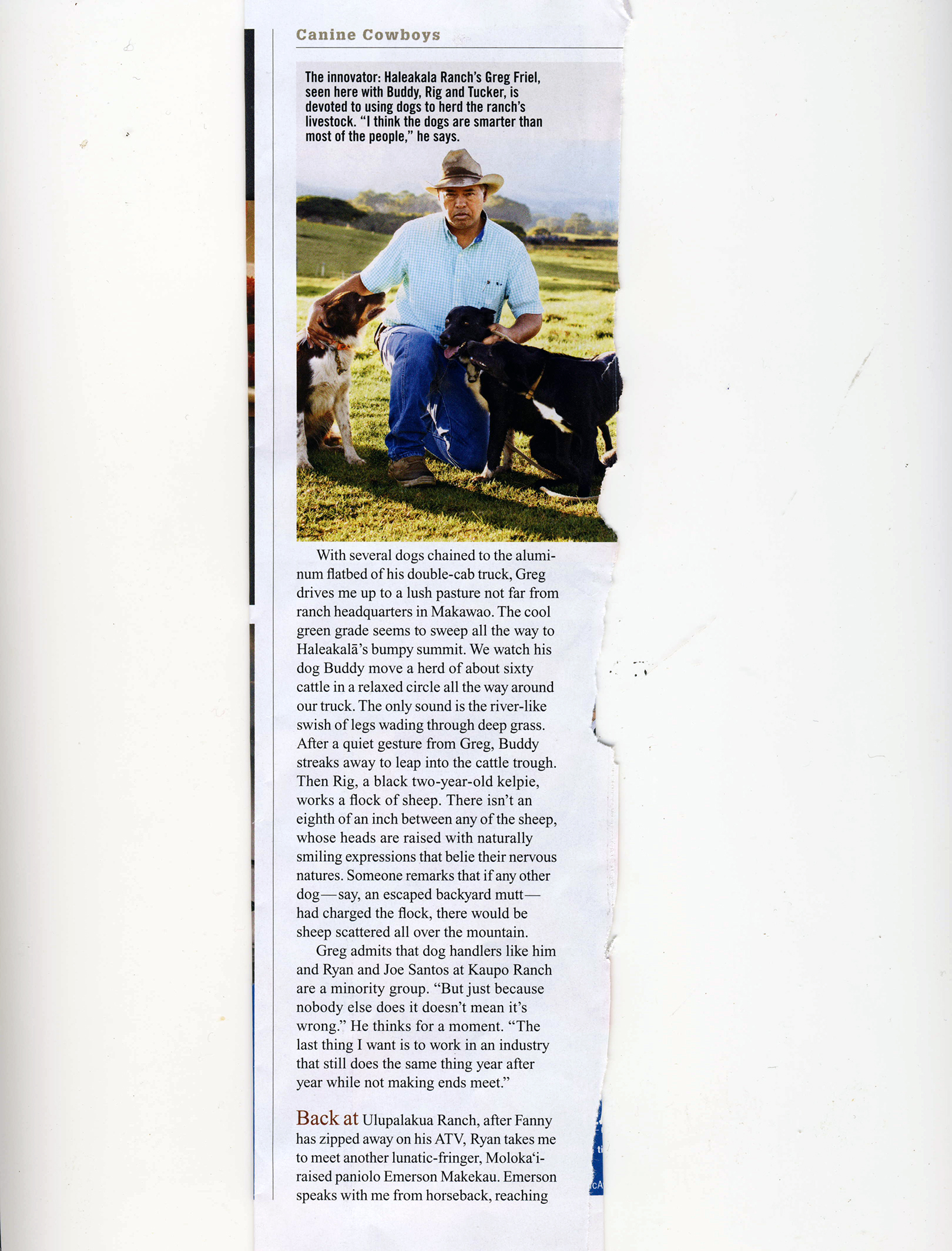 Ranch Dogs_Page_5