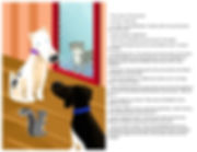 Book 7 View 2.jpg