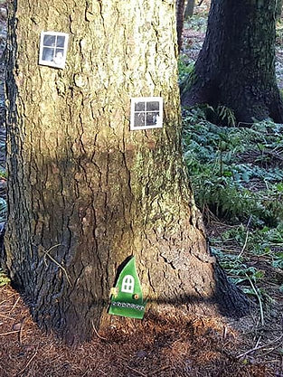 Fairy House in the Fairy Wood