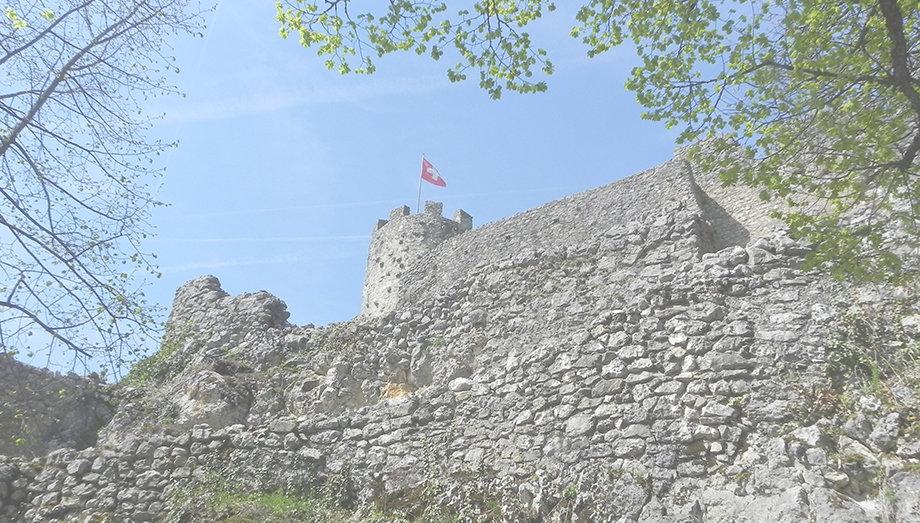 Ruine-Schloss-Neu-Falkenstein.jpg