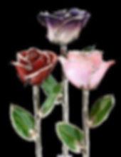 PlatinumTrim_Red_CreamPurple_Pink_blkBkg