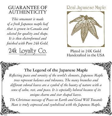 JapaneseMaple_AC.jpg