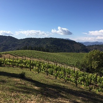 The Dietitian's Guide to Napa