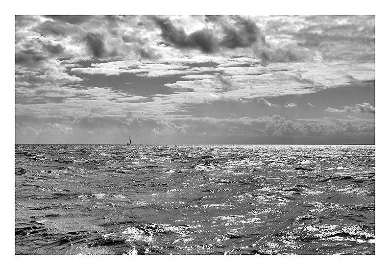Ocean Details 5