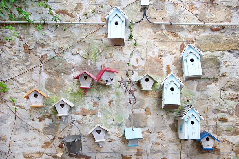 Bird Houses 2