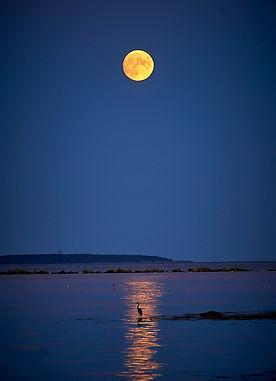 Full Moon August 20_LR.jpg