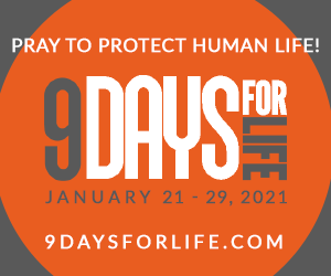 usccb-9-day-web-300x250.png