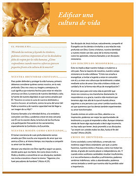 USCCB-2-Flyer2-culture-spanish-1-1.jpg