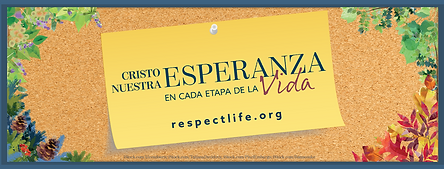 rlp-19-FB-cover-personal2-spanish.png