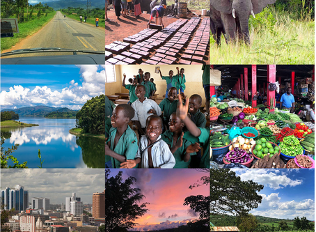 Want to see Uganda for yourself? Join us on a charity trip!