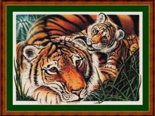 First Born Tigers