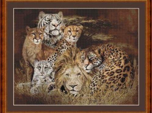 Big Cats II