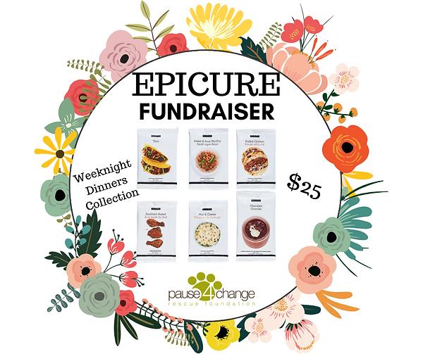 P4C Epicure Fundraiser.png