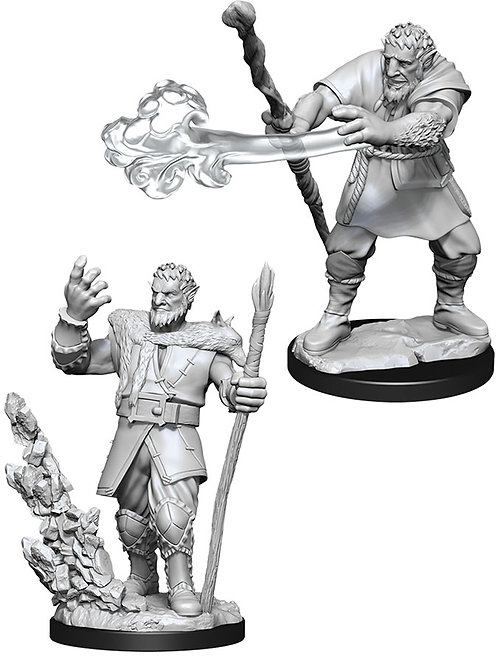 D&D  Unpainted Miniatures: W11 Male Firbolg Druid