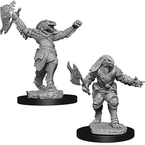 D&D  Unpainted Miniatures: W11 Female Dragonborn Fighter