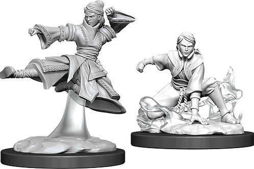 D&D  Unpainted Miniatures: W11 Female Human Monk