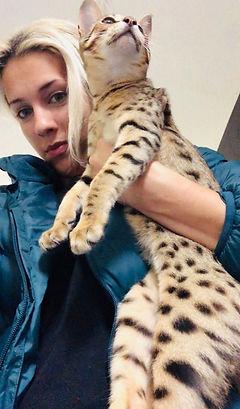 Khari as a kitten 2.jpg