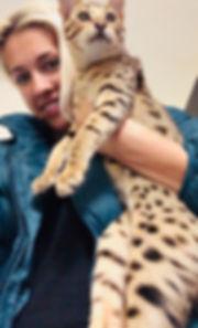 Khari as a kitten.jpg