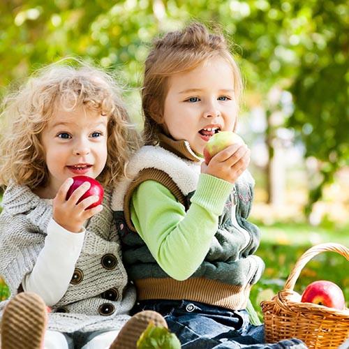 Еда на прогулке: необходимость или дурная привычка?