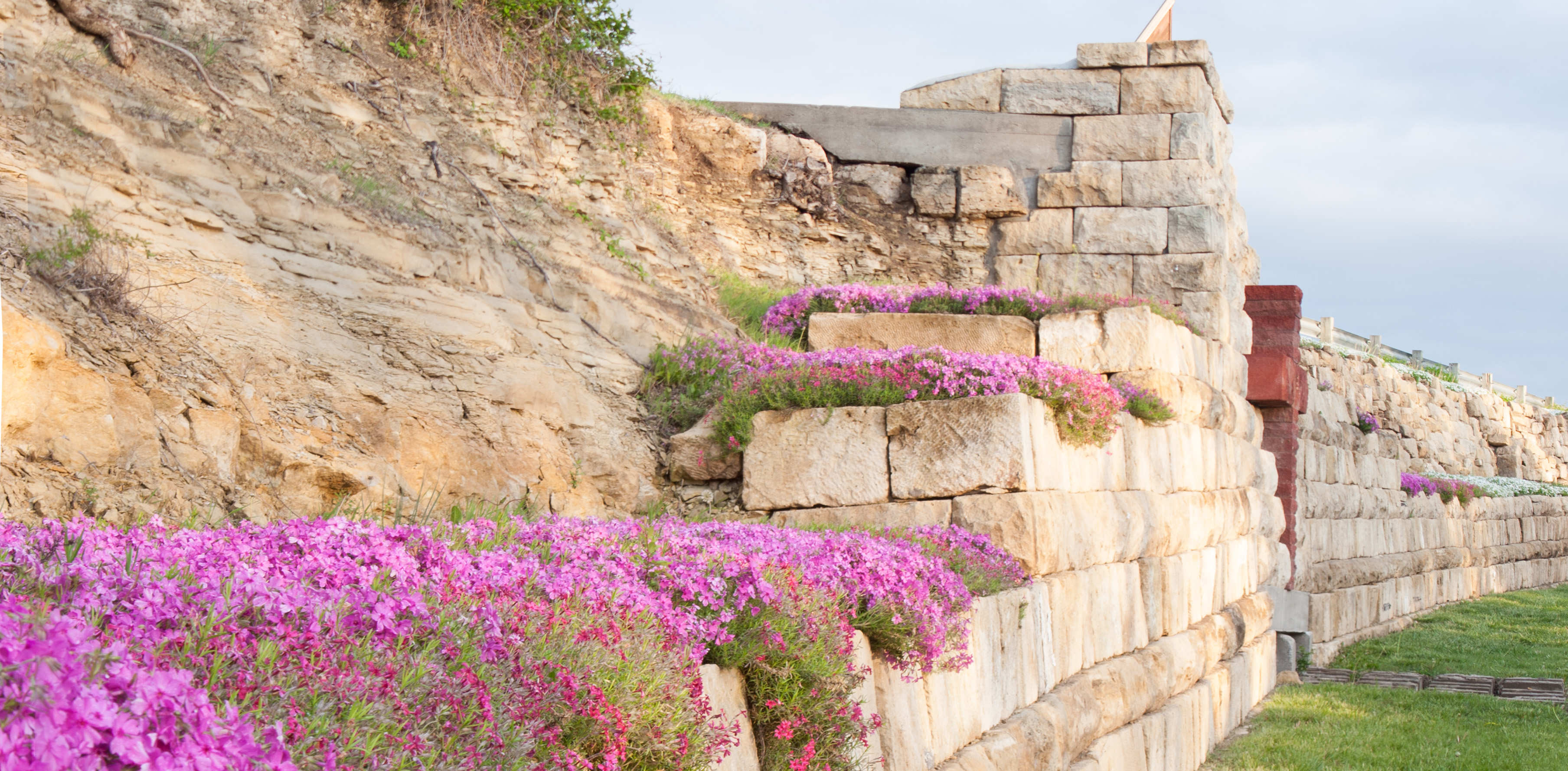 Flowers_on_Stone_Wall