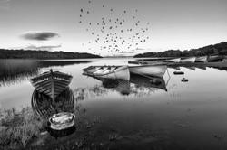 2nd Yvonne Mc Keown-Theme -Levally Lough
