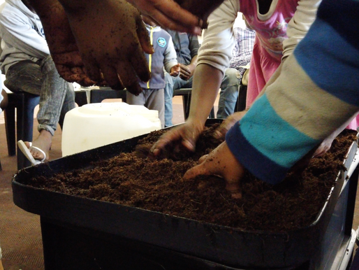 Vermicompost | Benefits & what to feed your worms | Workshop